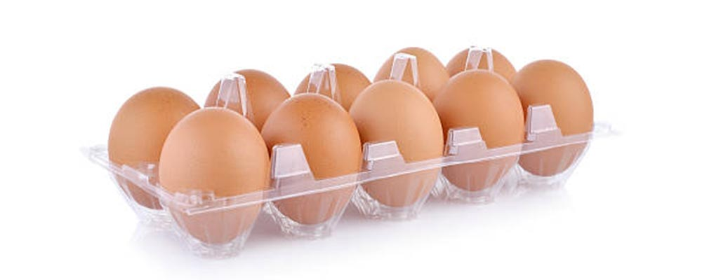 EGG PACKAGING: WHAT IS BETTER AND HOW TO MAKE THE RIGHT CHOICE