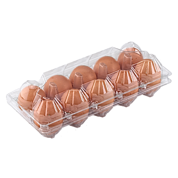 "Tray for 10 chicken eggs    ""2 towers"" main-image"