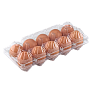 Tray for 10 chicken eggs
