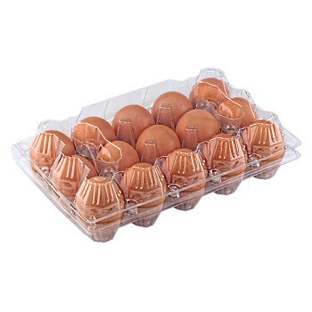 Tray for 15 chicken eggs main-image