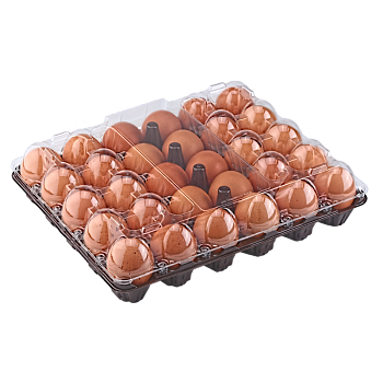 Tray for 30 chicken eggs main-image