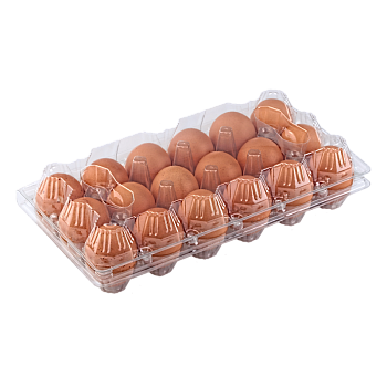 Plastic chicken egg trays 18 keys trays main-image